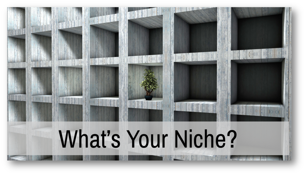 what's your content business niche